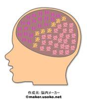 My brain2